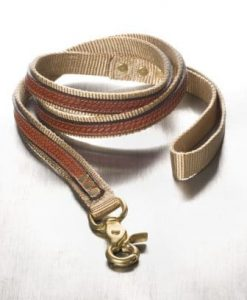 Leather & Nylon Leads