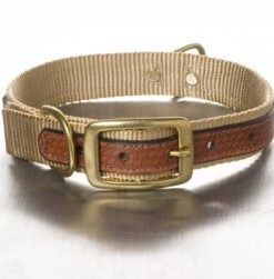 Leather & Nylon Collars