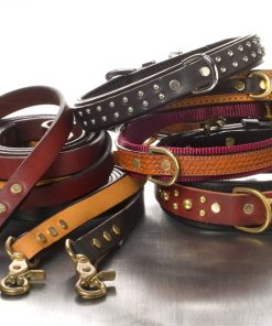 Leather Dog Leashes & Leads