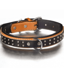 Bridle Leather Collars