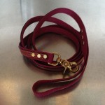 cooper-collar-red
