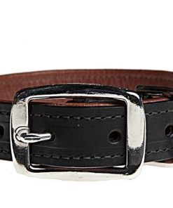 Elk & Bison Collars