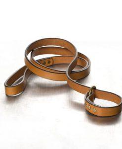 light-brown-polo-slip-lead