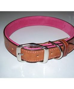 Bridle Tanned Bison & Elk Collar-Walnut/Pink